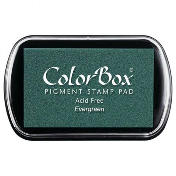 Tampon estándar Colorbox evergreen15023