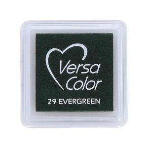 Tinta Versacolor Evergreen TVS 29