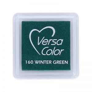 Tinta Versacolor Winter Green TVS 160