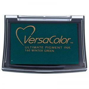 Tinta Versacolor Winter Green TVS1-160