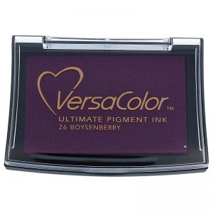 Tinta Versacolor Boysenberry TVS1-26